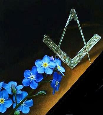 Una pequeña e insignificante florecilla azul se convirtió en un significativo emblema de la Orden.