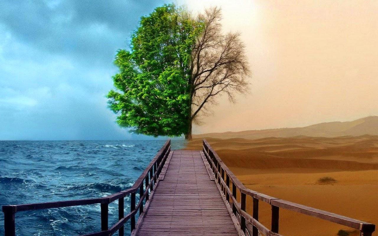 Parece ser una ruta invisible y ancestral para cuyo recorrido la inteligencia es su mejor medio. ¿Hasta dónde pues el instinto y desde dónde la voluntad?.